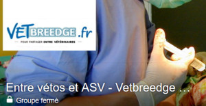 vetbreedge facebook veterinaires asv